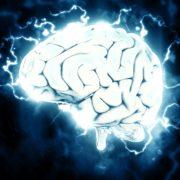 brain life insurance epilepsy