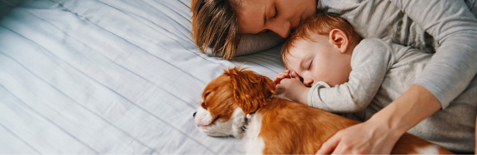 Mom, puppy, and baby