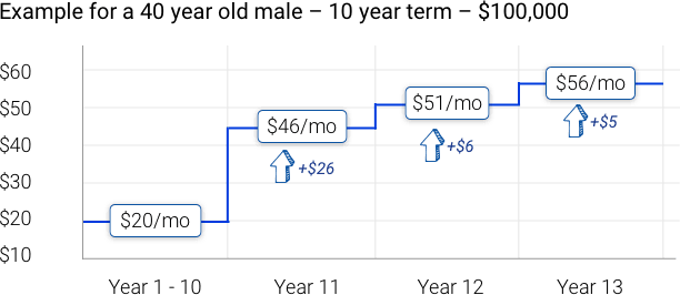 What happens when term life insurance ends